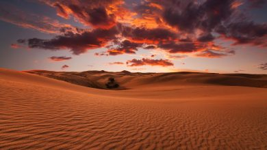 Photo of Some of the Most Beautiful Deserts In The World