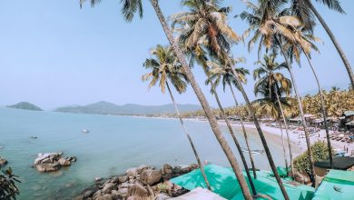 Photo of Things You Absolutely Must Do In Goa