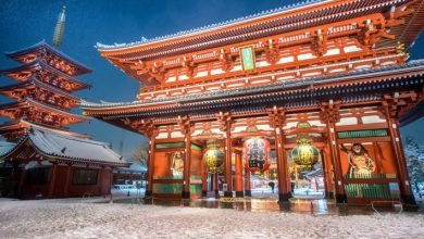 Photo of Best Things To Do In Japan